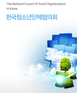 The Natlonal Councll of Organlzatlons In Korea �ѱ�û�ҳ��ü����ȸ